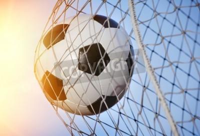 Fototapeta Piłka wbita w tył bramki