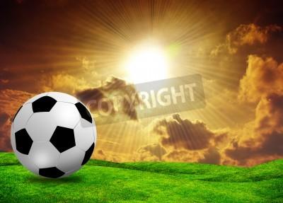 Fototapeta piłki nożnej boisko do piłki nożnej na zachód słońca niebo trawa zielona