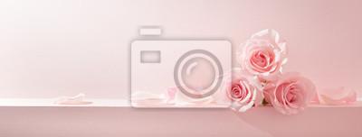 Fototapeta Pink rose petals set on pastel pink background