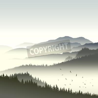 Fototapeta Plac ilustracji rano mglisty las iglasty na wzgórzach w mgle ze stadem ptaków.