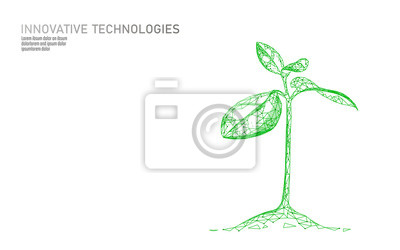 Fototapeta Plant sprout ecological abstract concept. 3D render seedling tree leaves. Save planet nature environment grow life eco polygon triangles low poly vector illustration