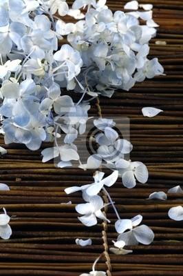 Płatki hortensji na maty bambusowe słomy patyku