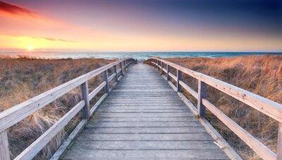 Fototapeta Plaża Dostęp do Morza Bałtyckiego - Wiosna