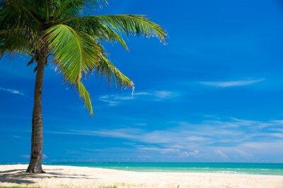 Fototapeta Plaża i tropikalne morze