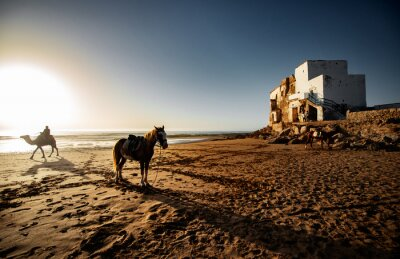 Plaża, Ocean Atlantycki, Maroko