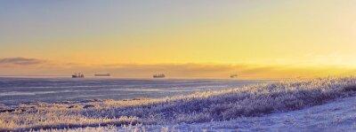 Fototapeta Plaża z trawy całkowicie pokryty lodem, musujące w słońcu. W tle, statki na morzu stoi na drogach i światło słońca. Panorama. Zima piękny widok.