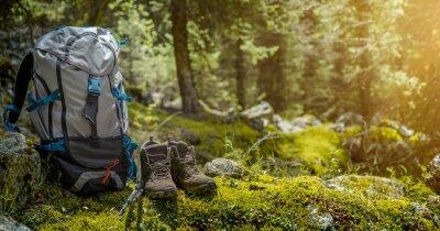 Fototapeta Plecak i buty turystyczne w lesie