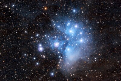 Fototapeta Plejady w ciemnym niebie