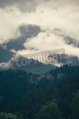 Fototapeta Pochmurno Góry lasu piękny krajobraz deszczowy moody pogoda kolorów malownicze tło
