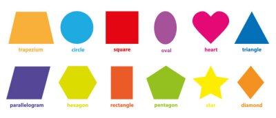 Fototapeta Podstawowa kolekcja geometrycznych kolorowych kształtów 2D
