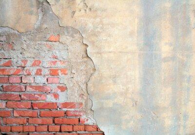 Fototapeta Pół pomalowane ściany z cegły
