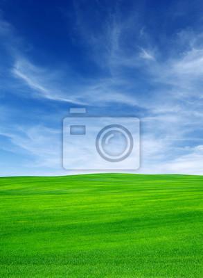 pole i niebo