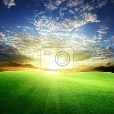 pole trawy i perfect sky sunset