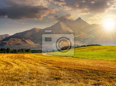 Fototapeta Pole wiejskich w Tatrach o zachodzie słońca