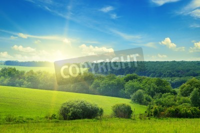 Fototapeta Pole zielone i niebieskie niebo z chmury światła