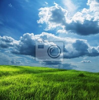 Fototapeta Polowe i burzy chmury