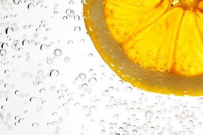 Fototapeta Pomarańczowy w wodzie