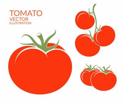 Fototapeta Pomidor. Wyizolowane z warzyw na białym tle