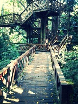 Fototapeta Ponte de Madeira Bosque do Alemão - Curitiba - Paraná