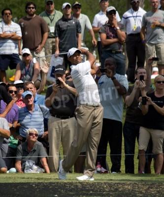 Fototapeta Ponte Vedra Beach, FL-maja 08: Tiger Woods na graczy Championship, PGA Tour, na dzień ćwiczeń 08 maja 2012 na TPC Sawgrass, Ponte Vedra Beach, Floryda, USA.