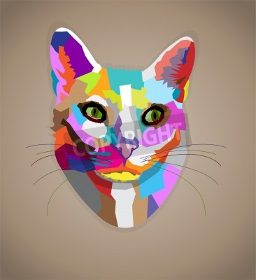 Fototapeta Pop-art kolorowe kot.