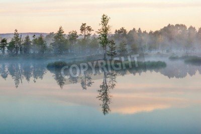 Fototapeta Poranna mgła nad jeziorem