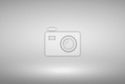 Fototapeta Product Showcase Spotlight Background - Crisp and Clear Infinite Horizon White Floor - Light Scene for Modern Clean Minimalist Design, Widescreen in High Resolution