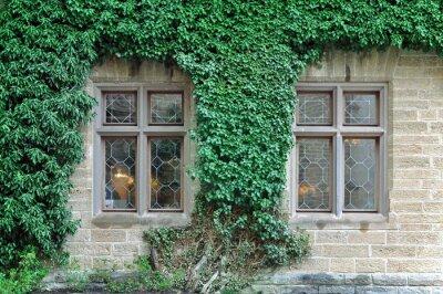 Fototapeta Przednia fasada starego zabytkowego budynku z kamiennych bloków, z kręconymi zielony bluszcz.