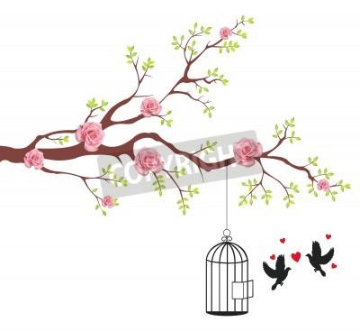 Fototapeta Ptak uwolnienia z klatki na jego kochanka. To koncepcyjne abstrakcyjny obraz.