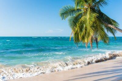 Fototapeta Punta Uva w Kostaryce, dzikim i pięknym wybrzeżu Karaibów