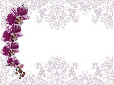 Fototapeta purple orchids in lilac floral decoration