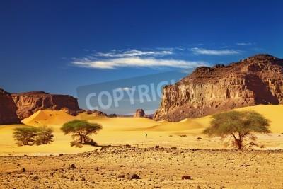 Fototapeta Pustynia krajobraz z wydmami i skałami, Pustynia Sahara, Tadrart, Algieria