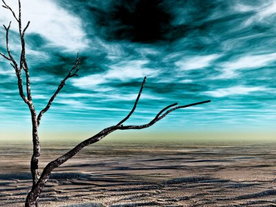 Fototapeta Pustynia Namib 5