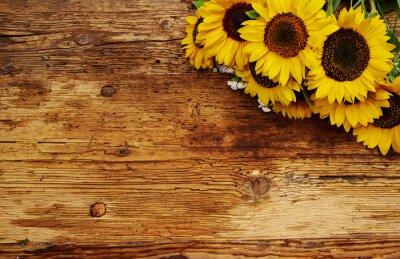Fototapeta Ramka z narzędzi ogrodowych i kwiatów. Widok z góry.