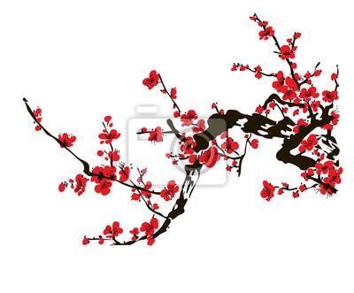 Fototapeta Realistyczne sakura blossom - japo? Skie wi? Niowe drzewo wyizolowanych na bia? Ym tle.
