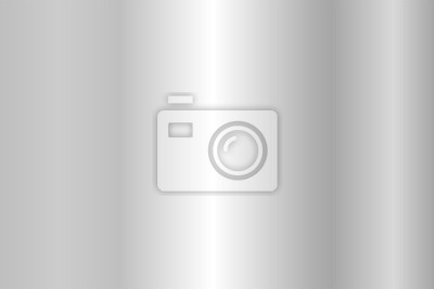 Fototapeta Realistyczne tekstury srebra. Błyszczące metalowe foliowy gradient. Ilustracji wektorowych