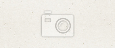 Fototapeta Recycled paper texture background banner