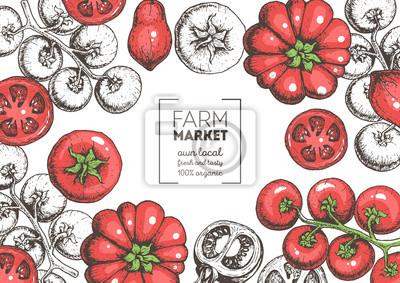 Fototapeta Ręcznie rysowane ilustracja pomidory. Szablon projektu żywności ekologicznej. Ilustracja kolorowy wektor. Ramka zdrowej żywności. Koncepcja rynku rolnego. Warzywo pomidorowy.