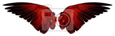 Fototapeta red wings isolated on a white
