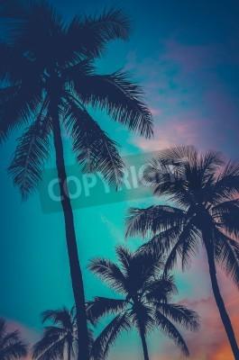 Fototapeta Retro Filtrowane Zdjęcia Na Hawajach Palm Trees At Sunset