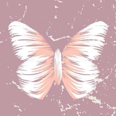 Fototapeta retro motyl na starym tle