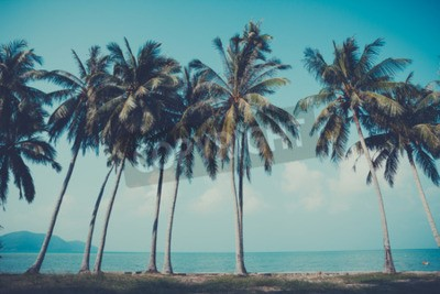 Fototapeta Retro stylizowane palmy na letni brzeg tropikalnych