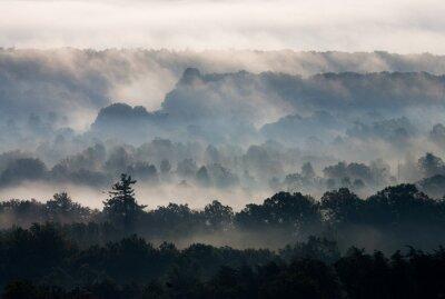 Fototapeta Ridges cofają się na wschodzie słońca w Blue Ridge.
