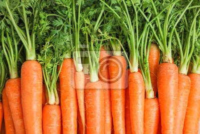 Fototapeta Ripe fresh carrots as background, space for text