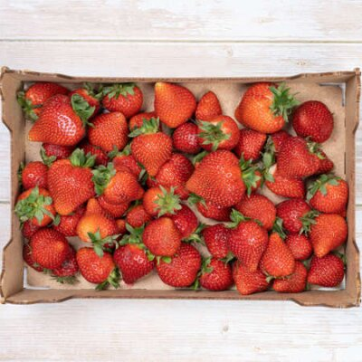 Fototapeta ripe, red strawberries in a box, top view. Summer concept, harvesting
