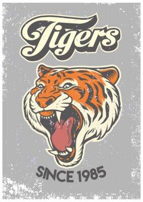 Fototapeta rocznika stylu grunge plakatu uczelni głowy tygrysa