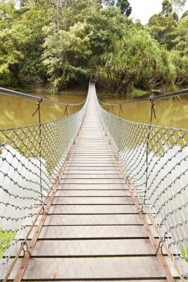 Fototapeta Rope bridge in a jungle