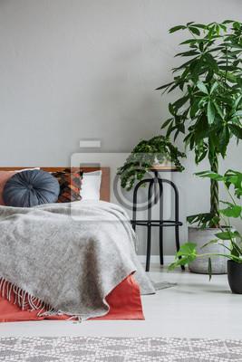 Fototapeta Fotel I Dywan W Wnętrzu Mieszkania Z Roślinami I