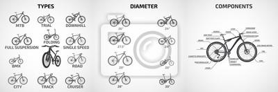 Fototapeta Rowery wektorowe różnych typów, średnice kół, do sportu i rekreacji, schemat nowoczesnego roweru.