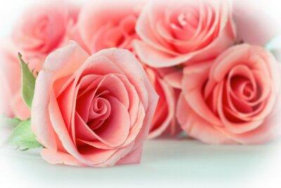 Fototapeta róża bukiet kwiatów rocznika tle